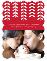 Modern Mistletoe Holiday Photo Cards