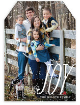 Dusting of Joy Holiday Photo Cards
