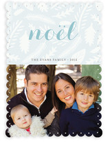Winter Foliage Holiday Photo Cards