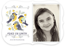 Perch Holiday Photo Cards