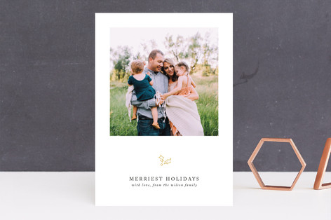 Delicate Salutation Holiday Photo Cards