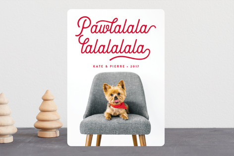 Pawlala Holiday Photo Cards