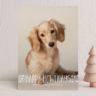 naughty dog Holiday Photo Cards