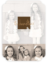 Frosted Pinecone Holiday Photo Cards