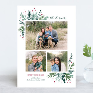 Winter Greens Holiday Photo Cards
