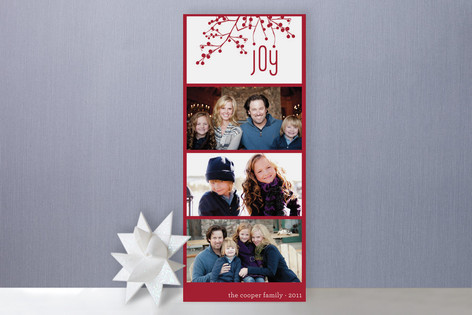 Organic Joy Holiday Photo Cards