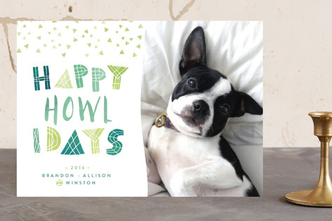 Feliz Fun Holiday Photo Cards