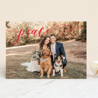 Sweeping Rejoice Holiday Photo Cards