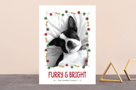 Jingle Bones Holiday Photo Cards