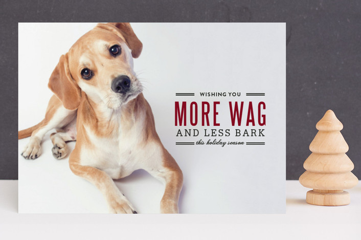 """""""More Wag Less Bark"""" - Full-Bleed Photo, Modern Holiday Photo Cards in Crimson by Lauren Hampton."""