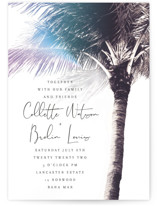 Summer Palm by Baumbirdy