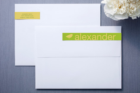 Lime and Cloud Skinnywrap™ Address Labels
