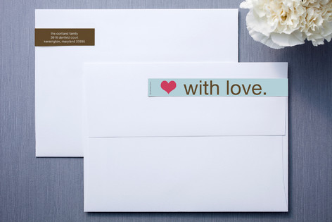 Blue and Brown Skinnywrap™ Address Labels