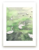 Swans in Prague