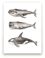 Three Stacked Whales