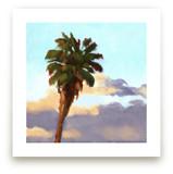Palm Palm Pom Pom by Rachel Nelson