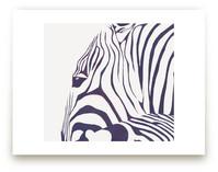 Hello Zebra!  by Gaucho Works