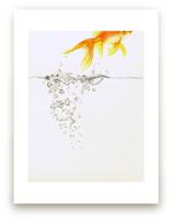 Aquatic High Jump 2 of... by Deborah Chou