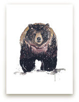Nature Bear