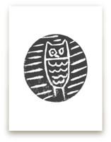 Little Owl by Jenn Lawrence