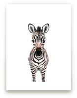 Baby Zebra 2 Wall Art Prints