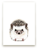 Baby Hedgehog by Cass Loh