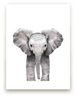 Baby Animal Elephant Wall Art Prints