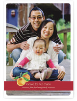 Lucky Oranges Lunar New Year Cards