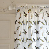Butterflies are Free by Pat Jennings