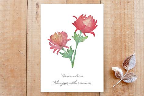 November Chrysanthemums Cards