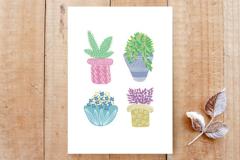 House Plants Illustration Cards