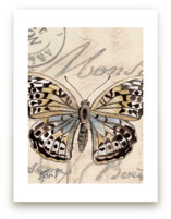 Sepia Butterfly II by Stephanie Toral
