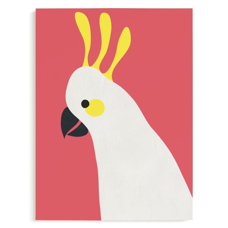 Hello Cocky! Marketplace Art Print
