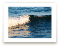 Portrait of a Wave by Erin Sadowski
