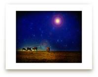 Elk Stars Snow