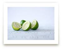 lime by Giulia Doyle