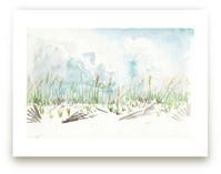 Pensacola Dunes by Annie Moran