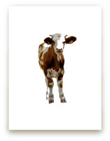 Austrian Calf by Katrina Leandro