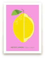 Bold Lemon Print
