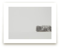 Snow Study: Shore by Erin Sadowski