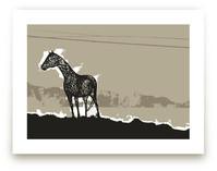 Horse & Earth