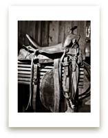 The Saddle by Debra Butler