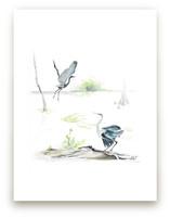 herons on the marsh by Annie Moran