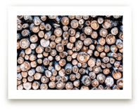 Firewood by Keely Norton Owendoff