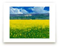 Calistoga Mustard