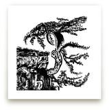 Whispering Pines by Stuart Heir