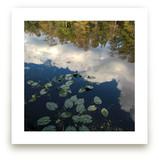 River Reflections by Skoodler Designs