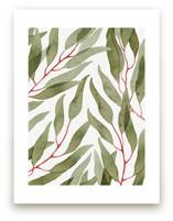 Eucalyptus Leaves of Ol... by Helga Wigandt