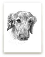 DogFace by Alaine Ball