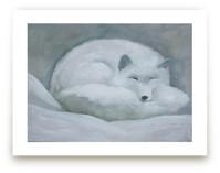White Fox Wall Art Prints